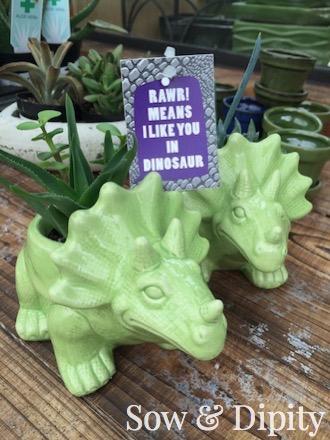 adorable dino succulent planter