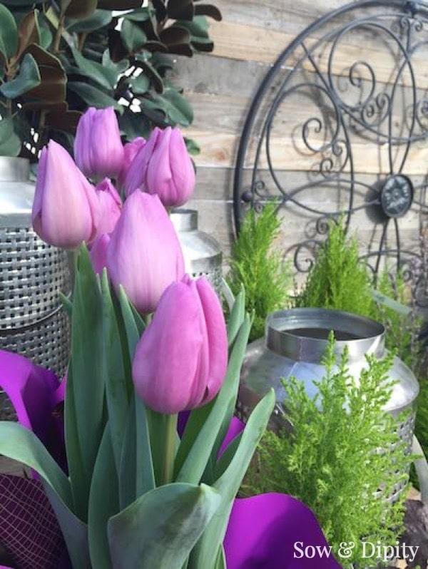Flowers for Heart Chakra