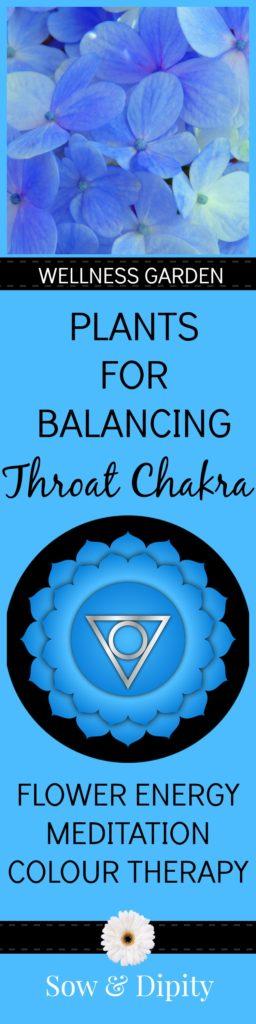 Wellness Garden. Plants for Balancing Throat Chakra. Garden with intention!