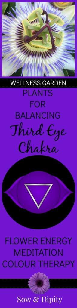 Plants for third eye chakra